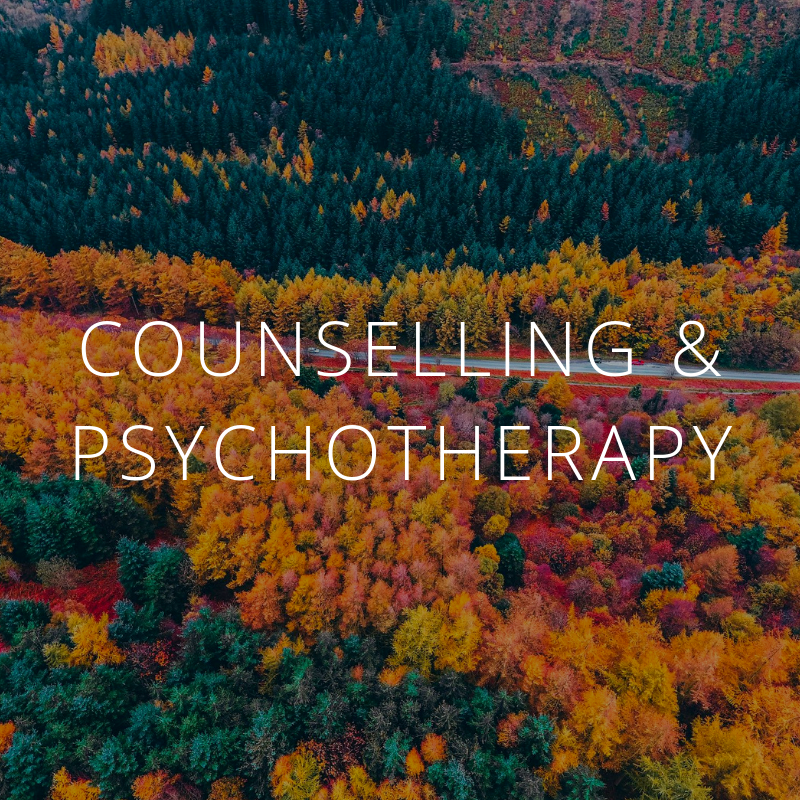 Marigold Whole Life Counselling & Psychotherapy Cambridge